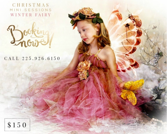 christmasfairy2014-2